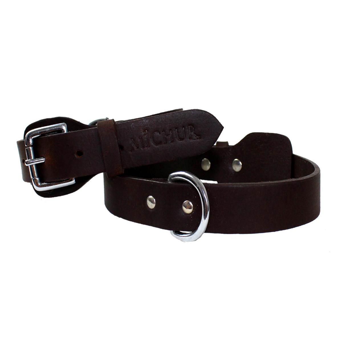 Michur Dog Collar